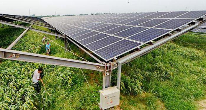 德州陵城区20MWp高效农业光伏电站项目系统接入报告